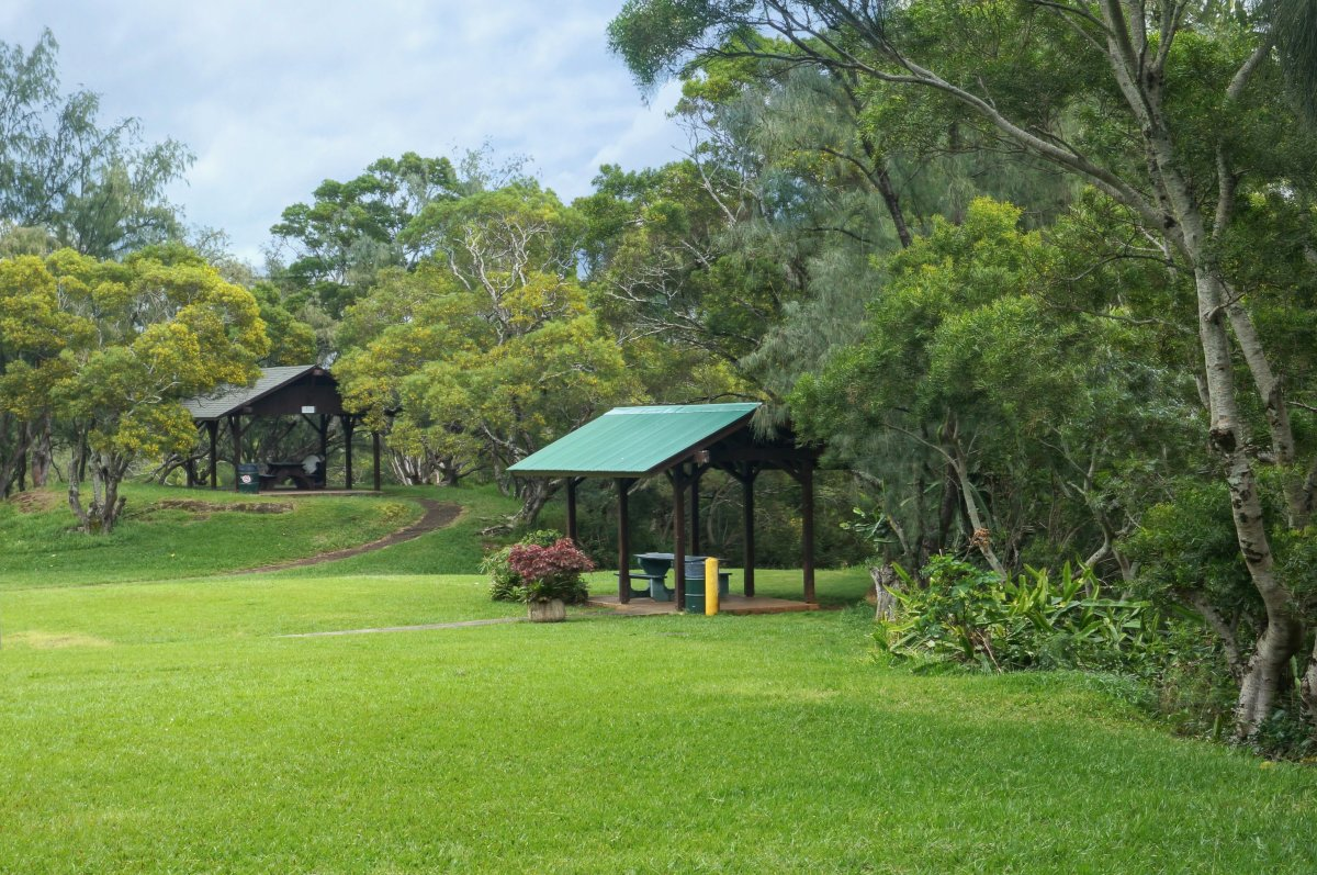 The picnic area is a short walk from the lookout.