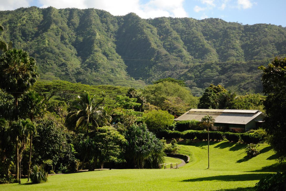 Harold L. Lyon Arboretum, Oahu, Hawaii
