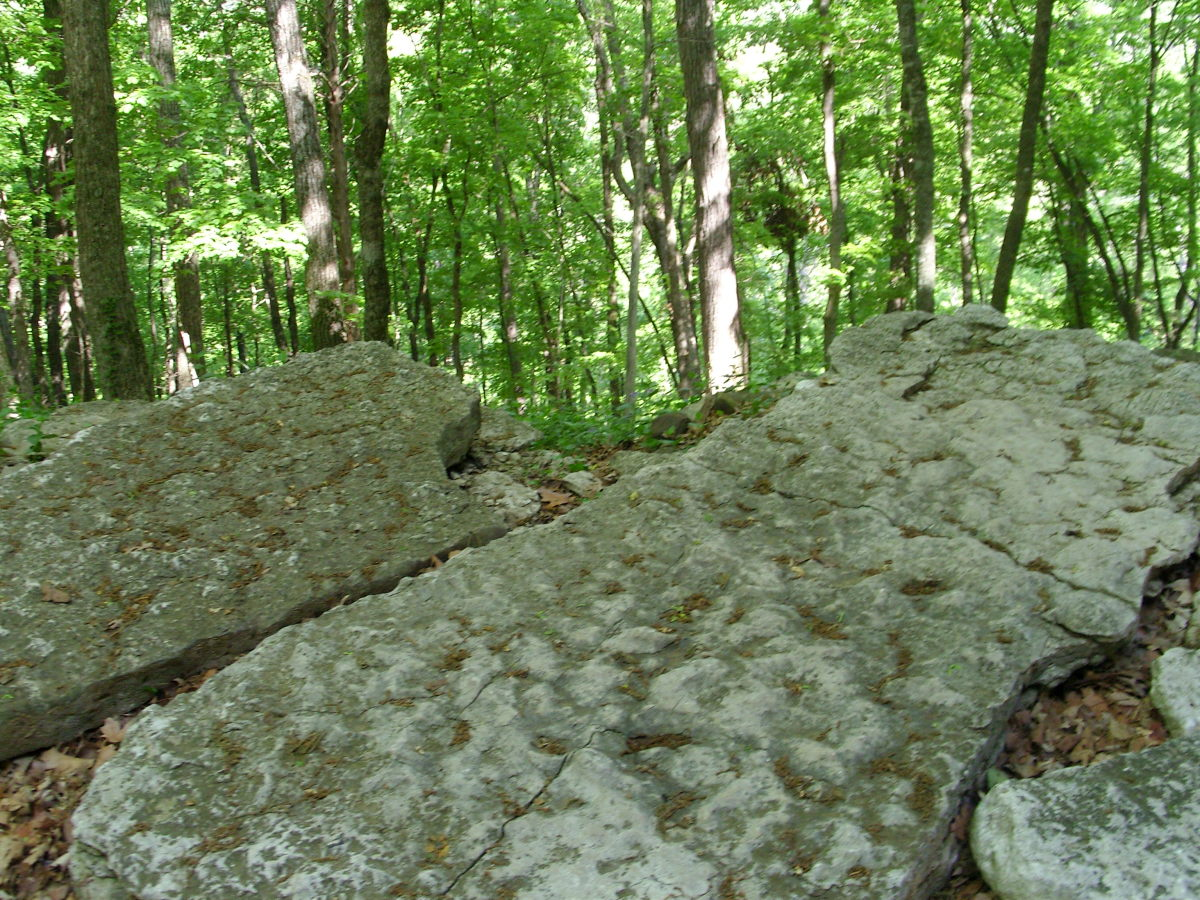 Enormous Boulders on Grounds
