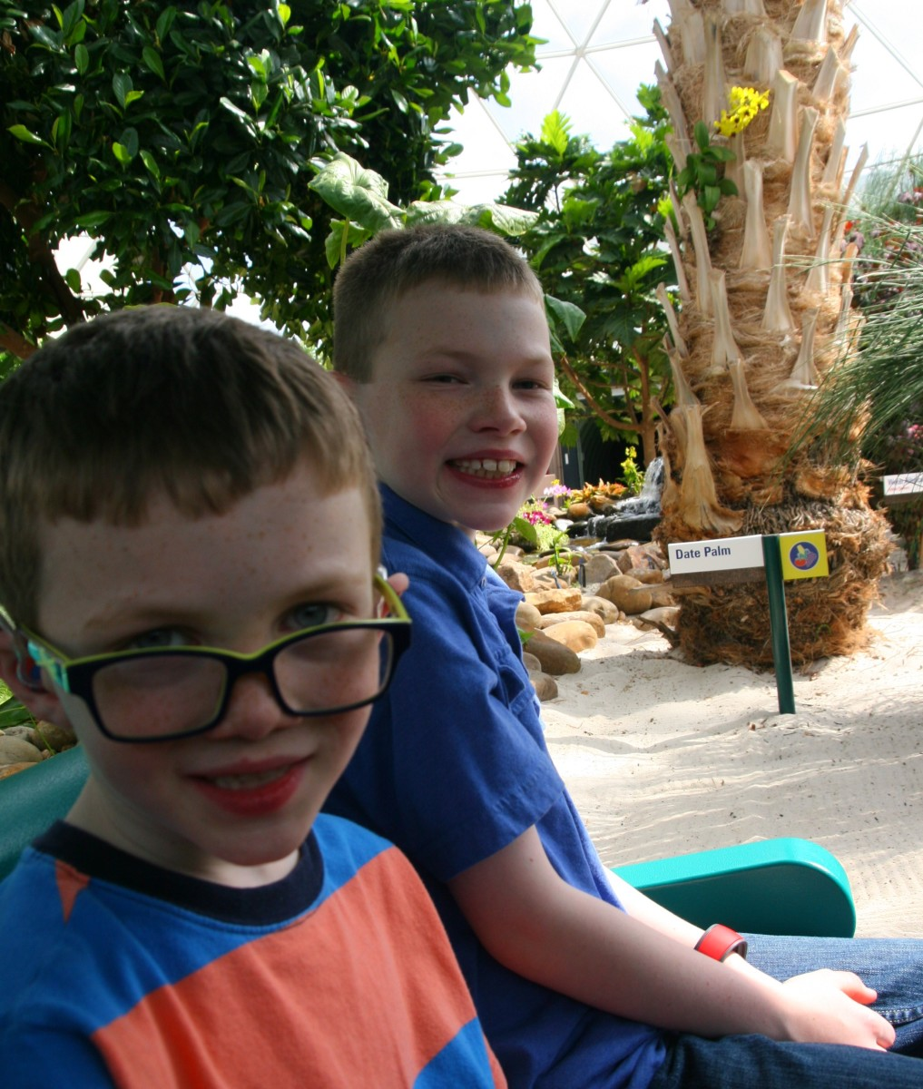 A sedate boat ride through Disney's greenhouses is a great way to cool off during the busy part of the day. This ride rarely generates long lines and is appropriate for all ages.