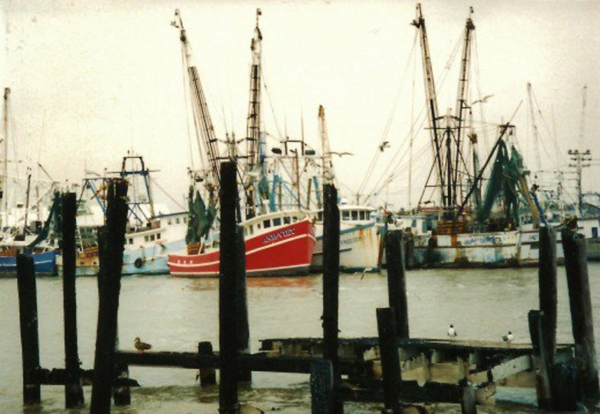 Shrimp Boats in Galveston