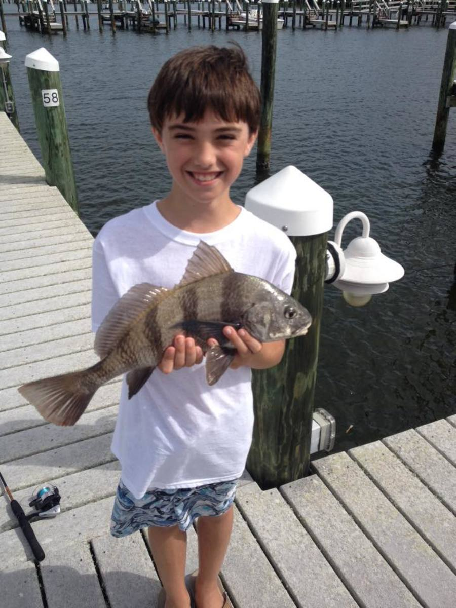 Longboat Key provides some great fishing!