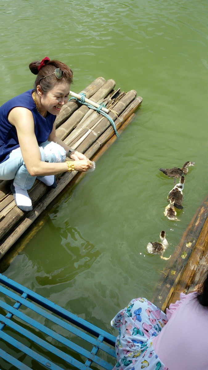 Feeding ducks next to our raft