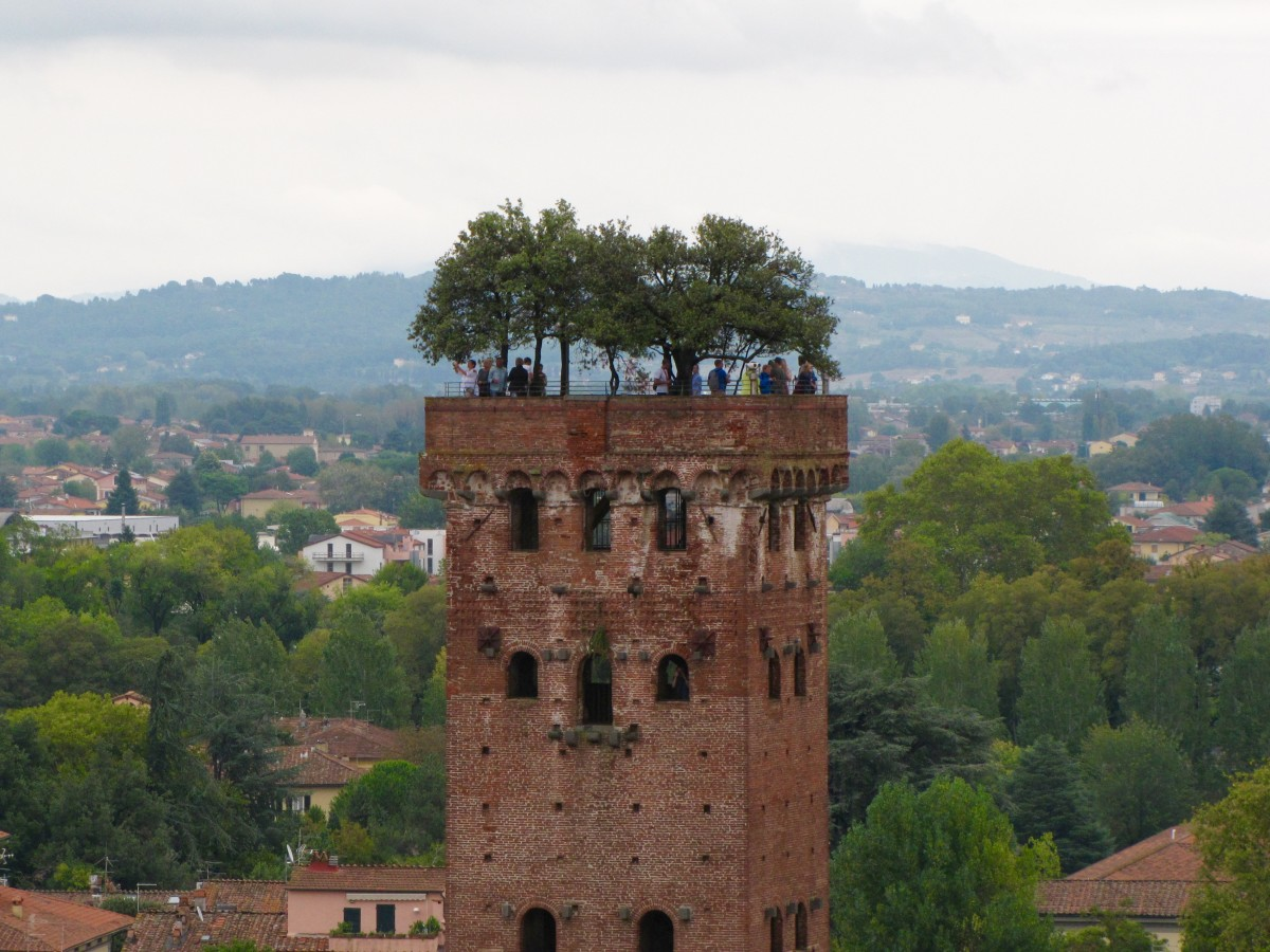 Torre Guinigi from atop the Torre del Ore