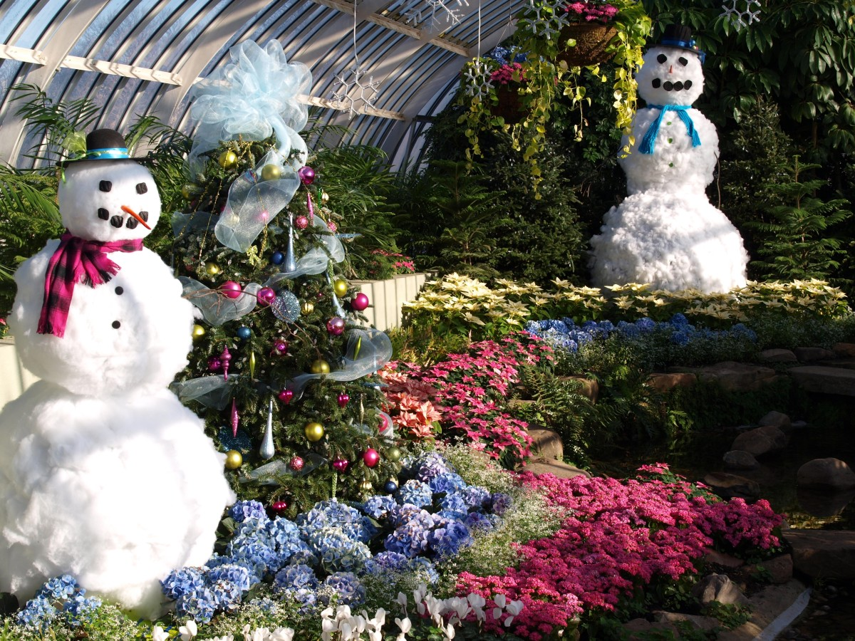 Phipps Conservatory at the holidays is breathtaking and worth a visit.