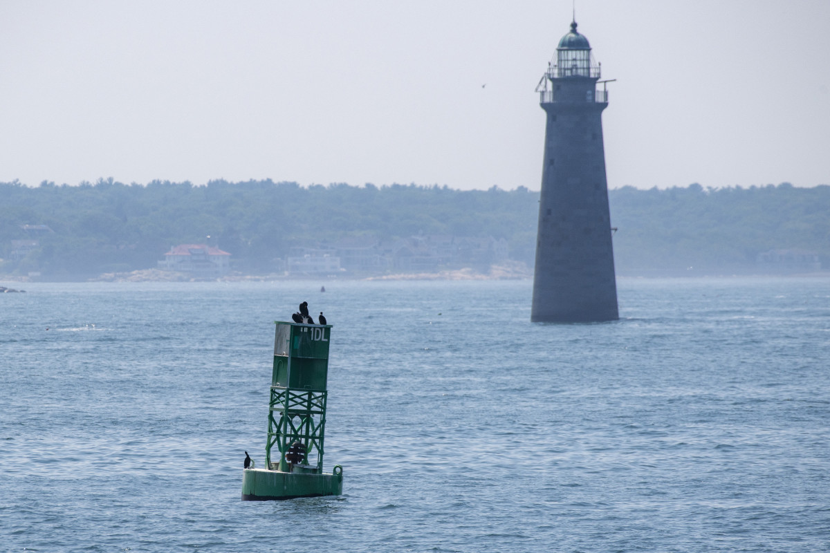 Some cormorants on a buoy, in front of a lighthouse