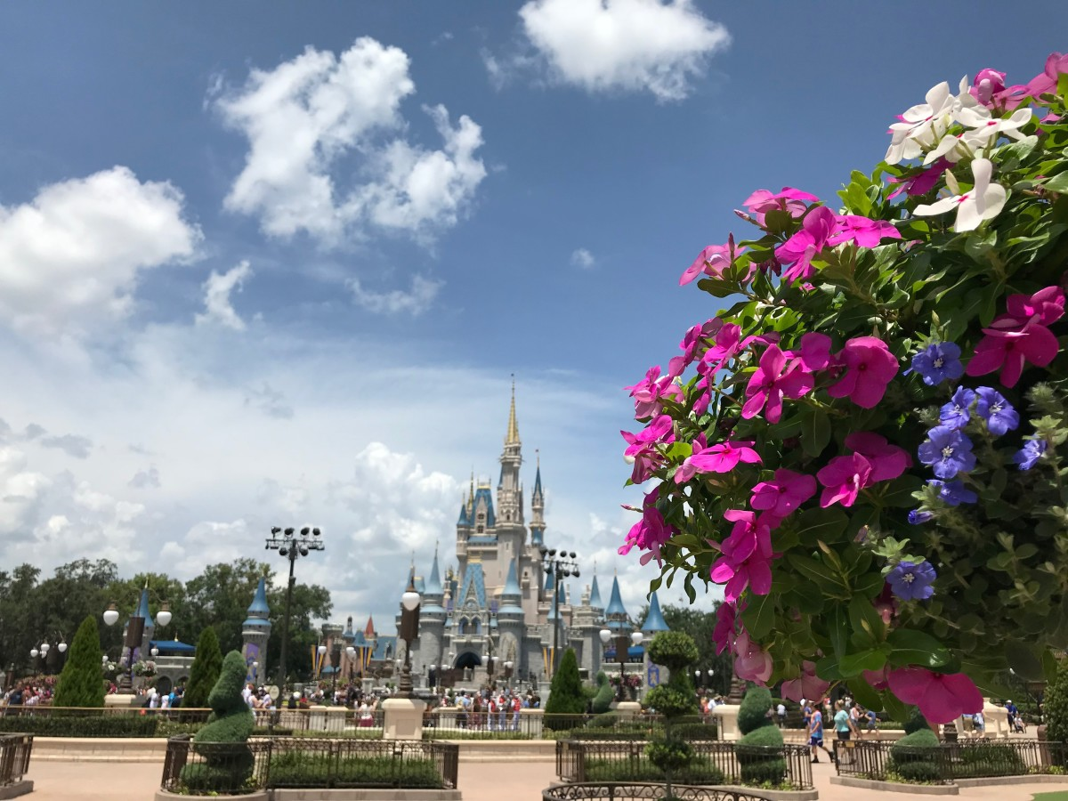 Always magical, the iconic castle at Disney World is the highlight of any visit.
