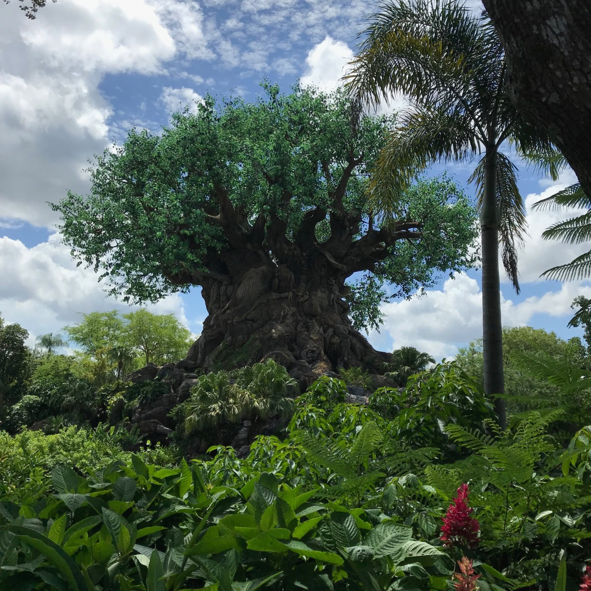 The Tree of Life centerpiece of Animal Kingdom.