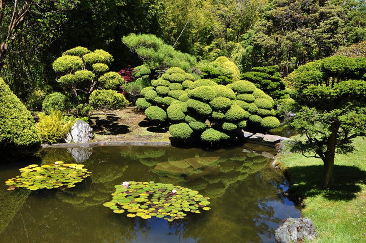 Many serene ponds full of Koi adorn the grounds.