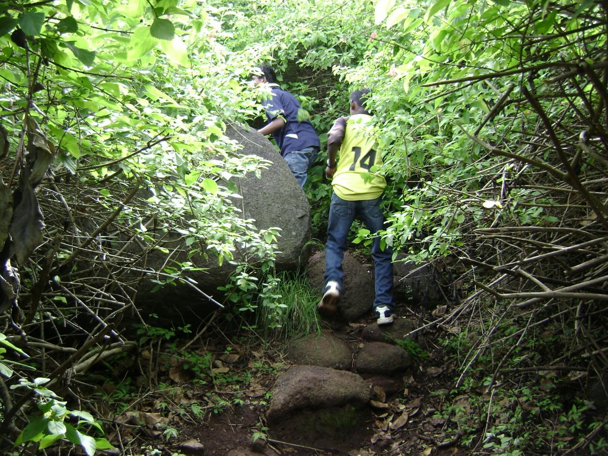 Trekking at Yelagiri