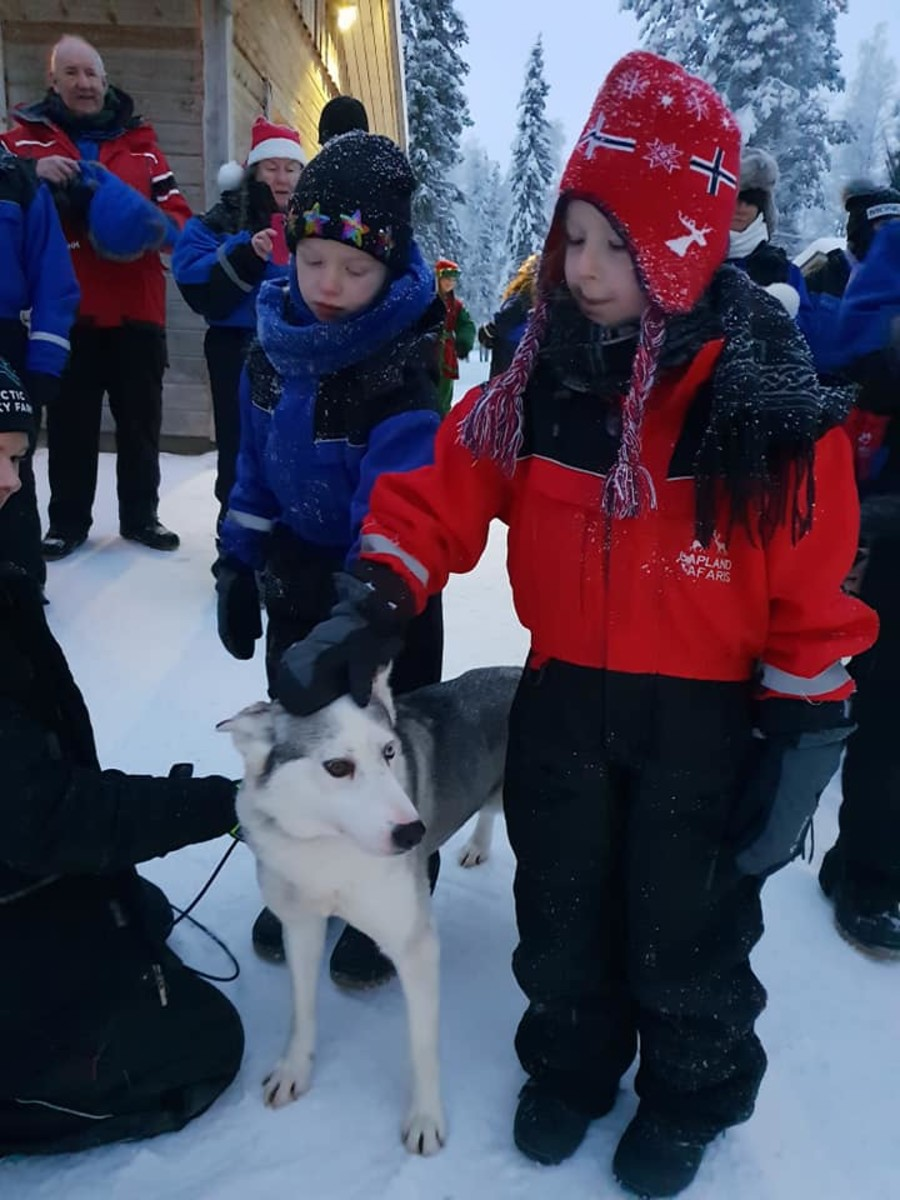 The children meeting one of the Huskies.