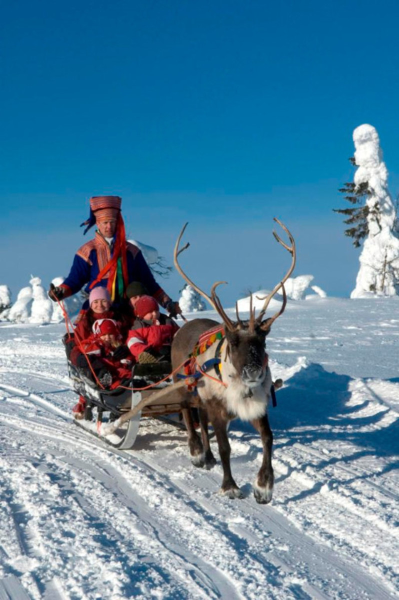 A breathtaking ride through Lapland's wintry scenery.