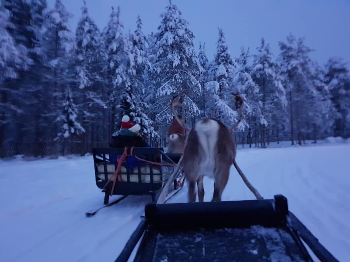 Time for a sleigh ride in the snow!