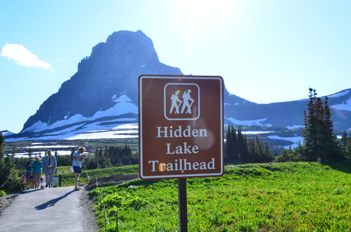 Hidden Lake Trailhead Sign @ Glacier National Park