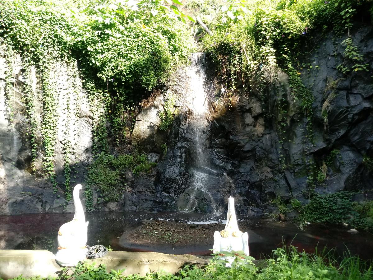 Waterfalls inside Hotel Kodai International