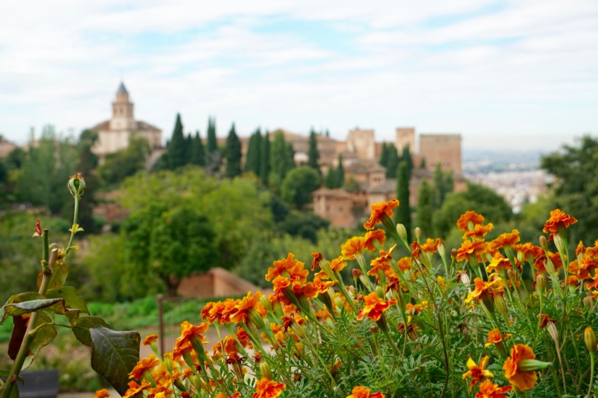 Alhambra from the Generalife Gardens