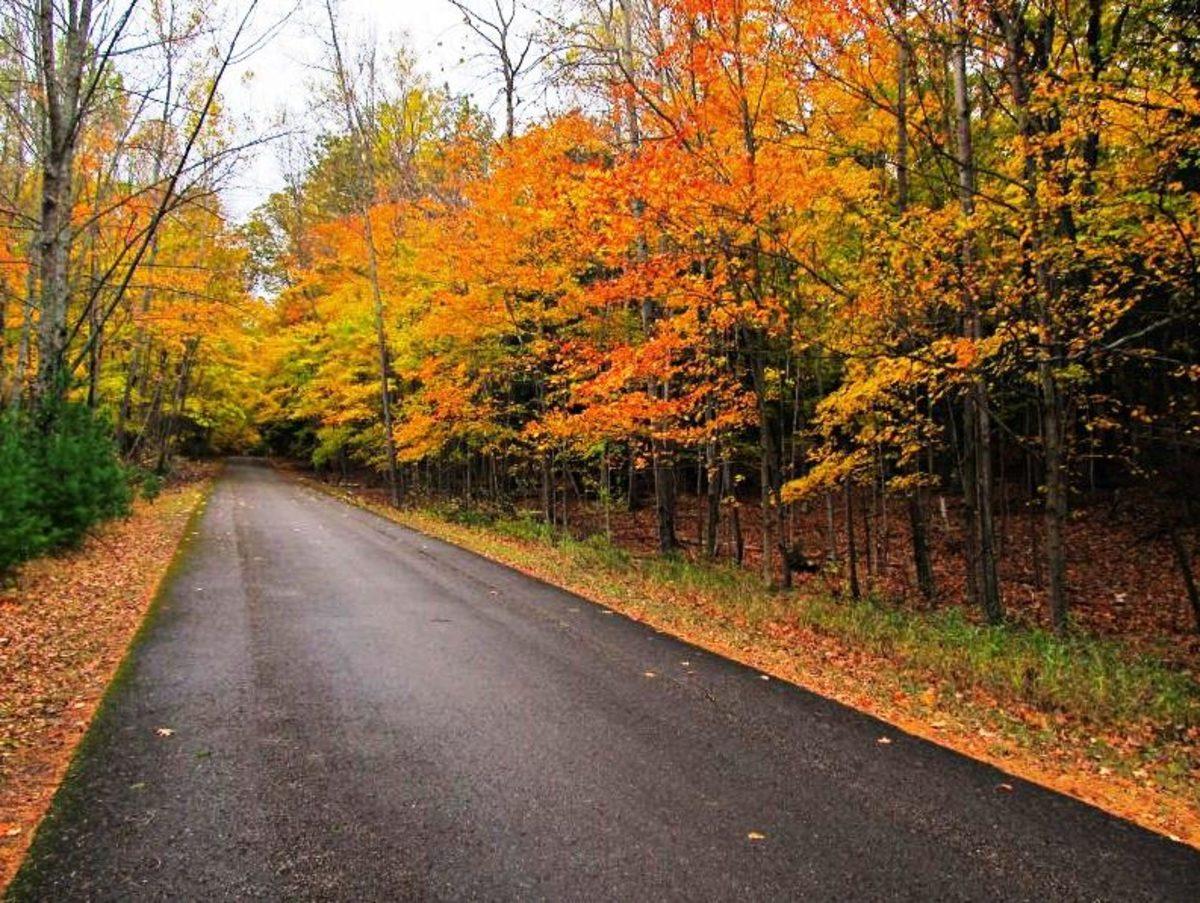 Fall drive in Door County, Wisconsin