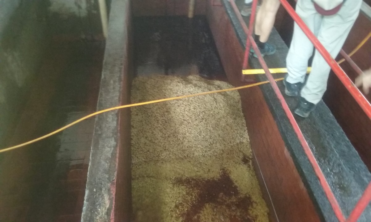 The Beans in the Vat