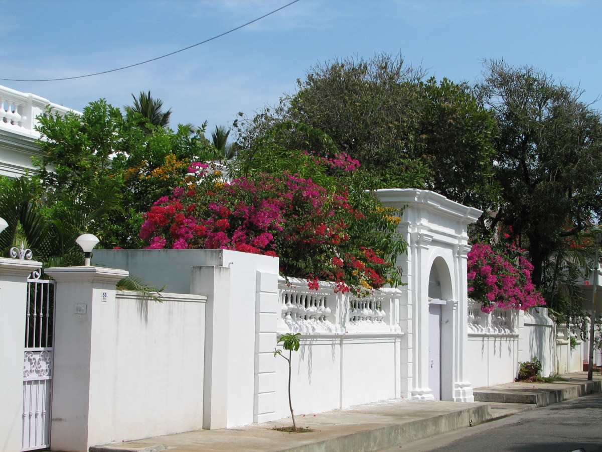 the_french_touch_in_peaceful_pondicherry