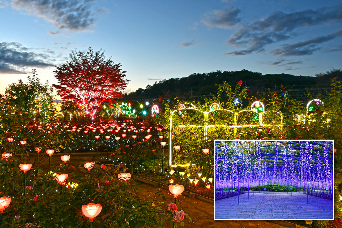 "Ashikaga Flower Park combines the best of the East and West within one ""garden."""