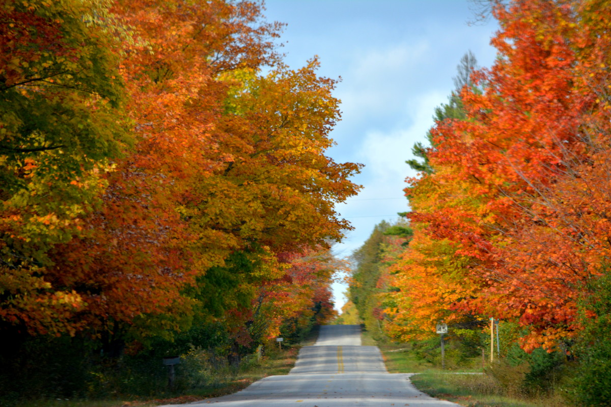 A beautiful drive in Washington Island during fall colors - Door County, Wisconsin