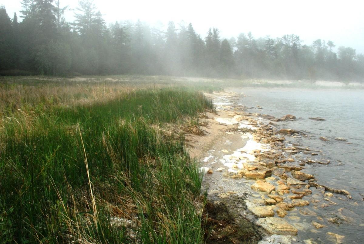 Foggy Bailey's Harbor Shoreline in Door County, Wisconsin