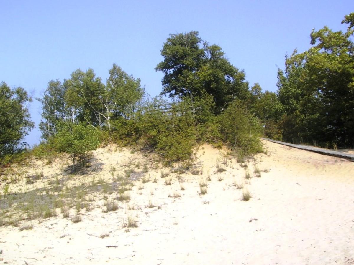 Dunes at c