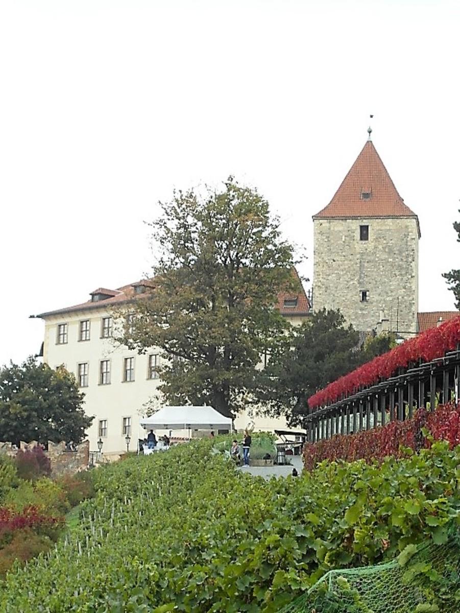 Lobkowicz Palace.