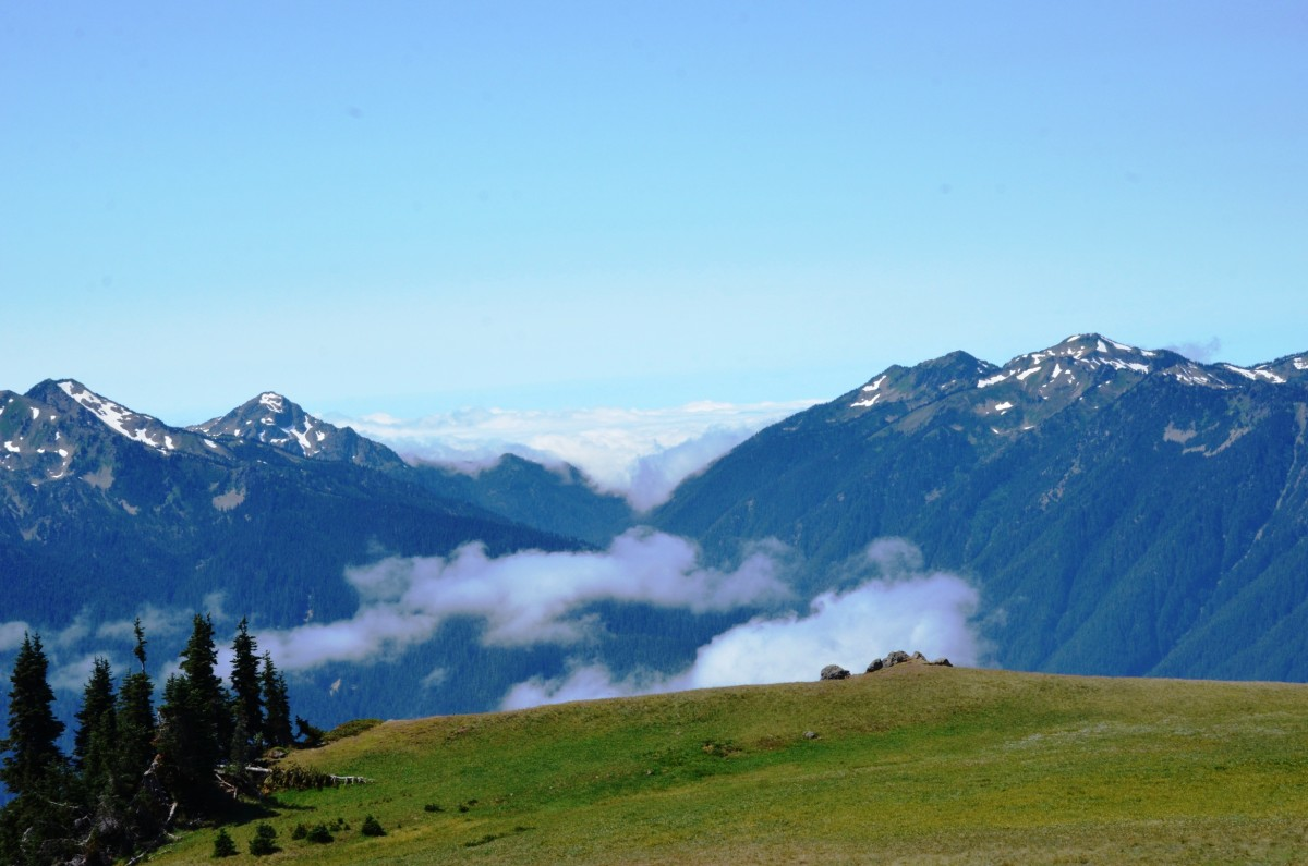 View from the Hurricane Hill Trail at Olympic National Park