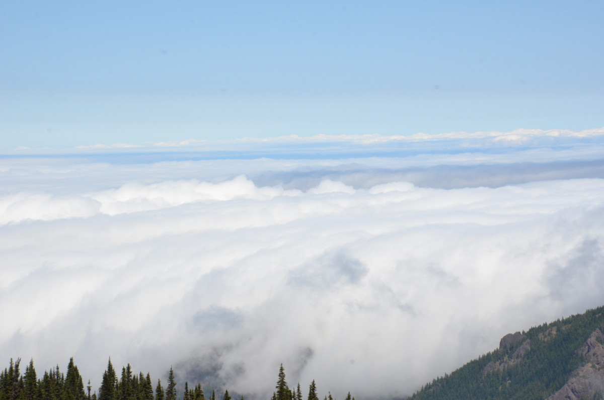 View from Hurricane Hill Trail on Hurricane Ridge in Olympic National Park near Seattle, Washington.