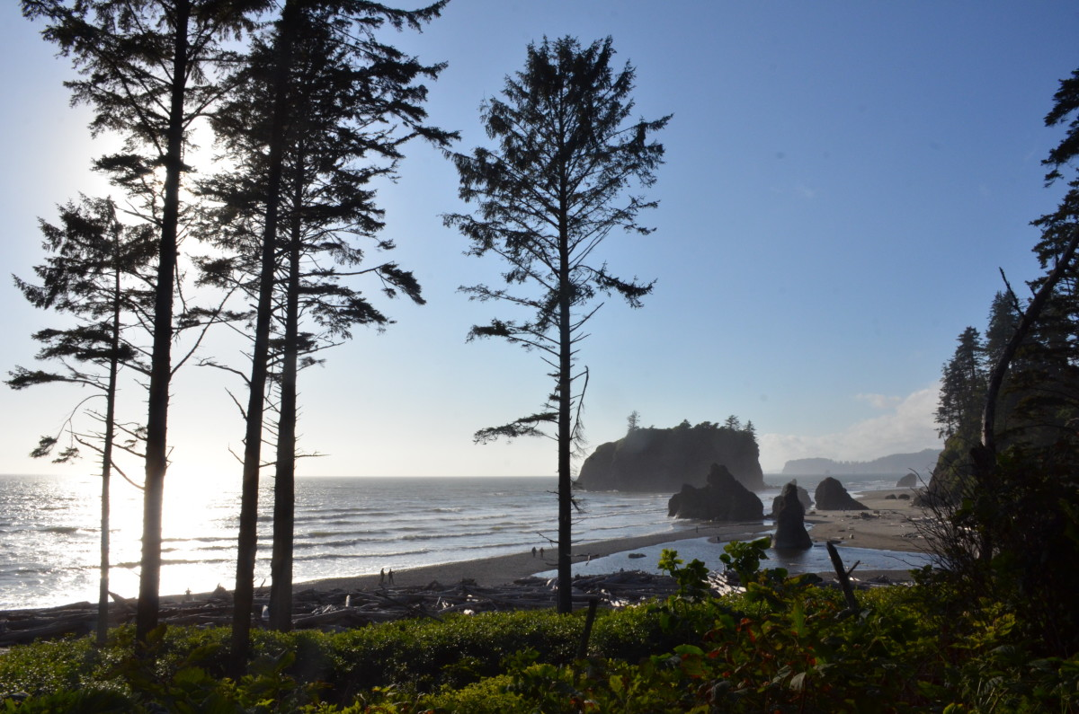 Ruby Beach at Olympic National Park near Seattle, Washington