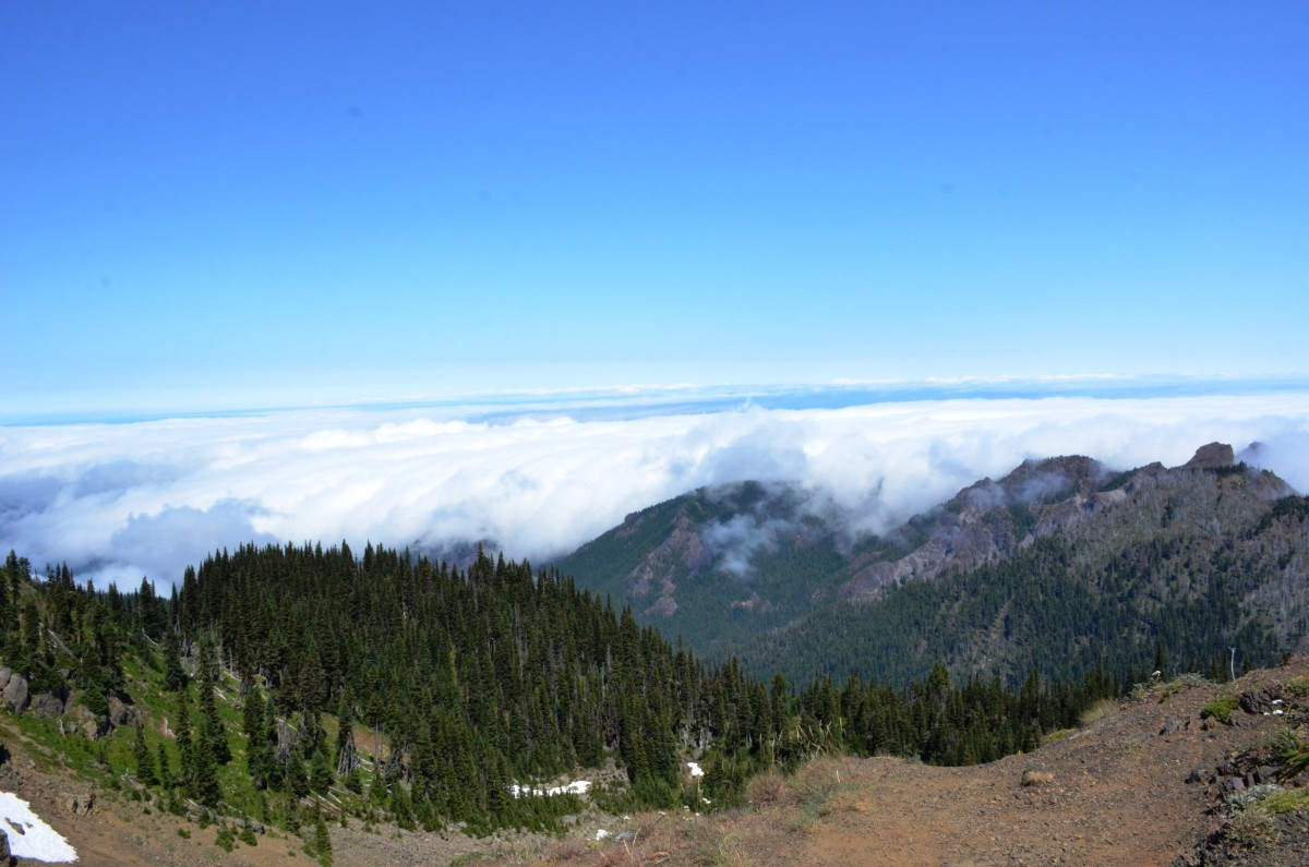 View from above the clouds along the Hurricane Hill Trail at Olympic National Park