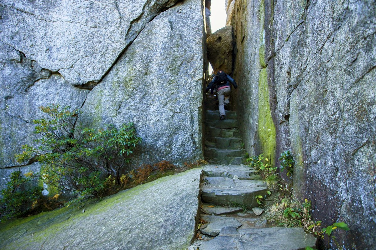 Ridge Trail at Old Rag Mountain Summit in Shenandoah National Park