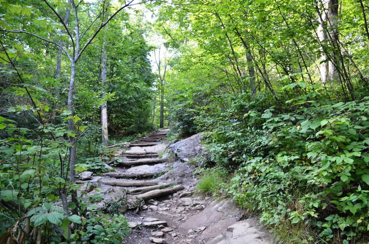 Dark Hollows Falls Trail at Shenandoah National Park