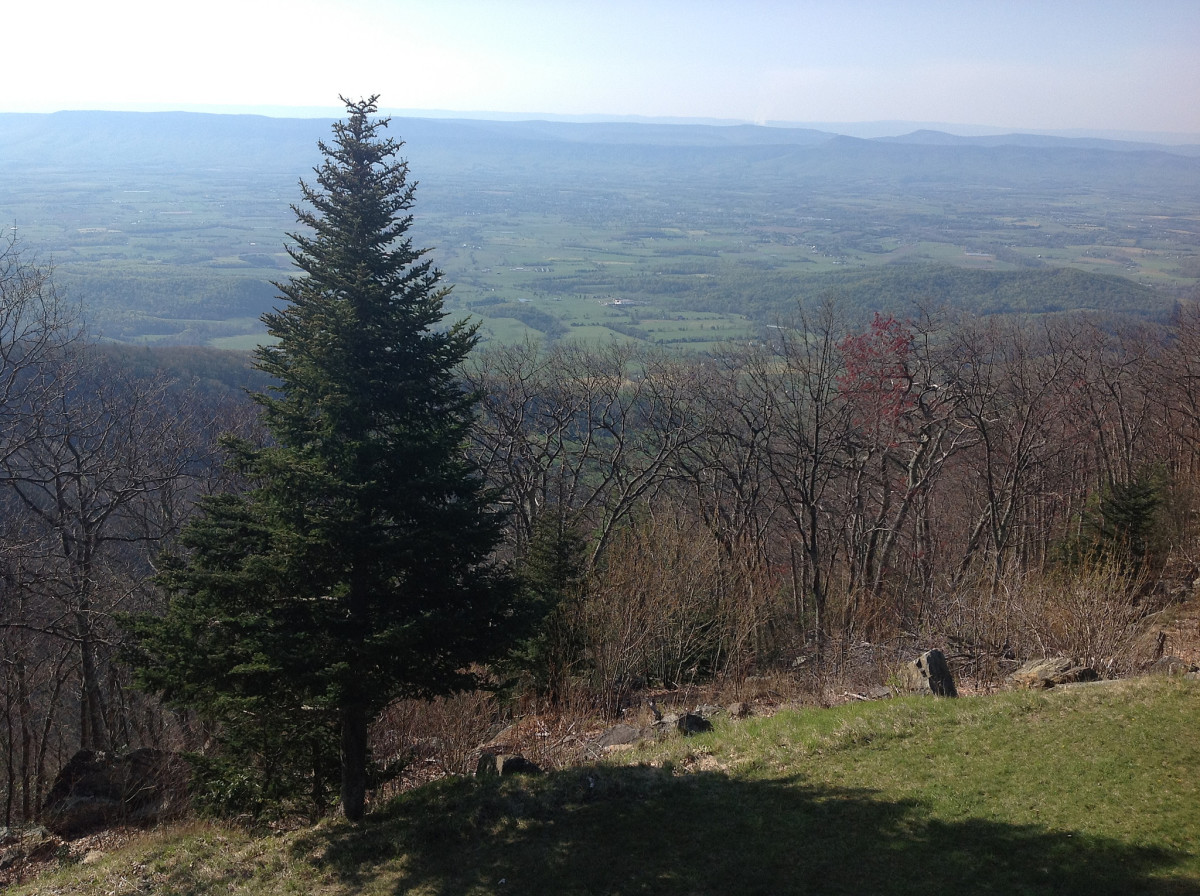 View from Skyland in Shenandoah National Park