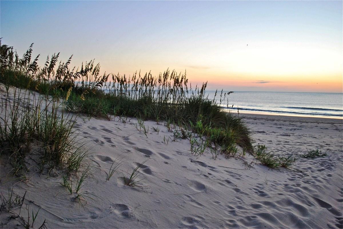 Sand Dunes at False Cape State Park in Virginia Beach, Virginia
