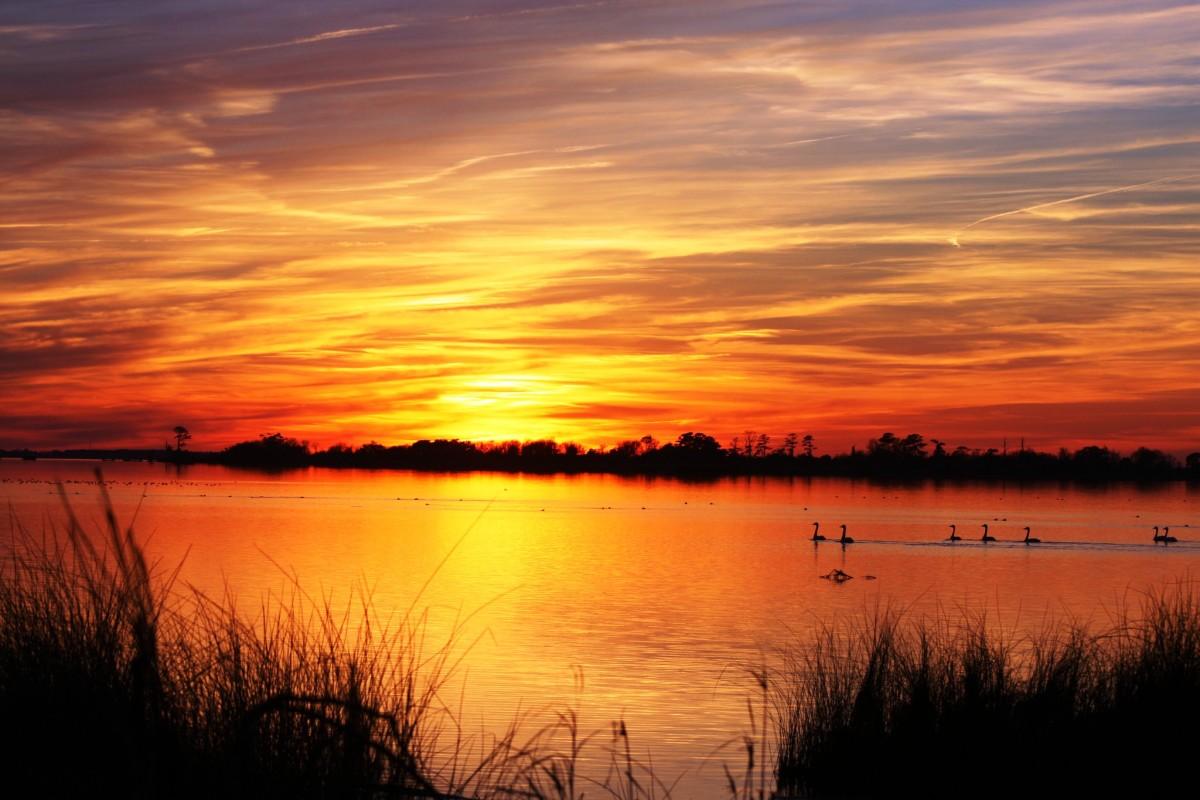 Sunset over Back Bay Wildlife Refuge in Virginia Beach, Virginia
