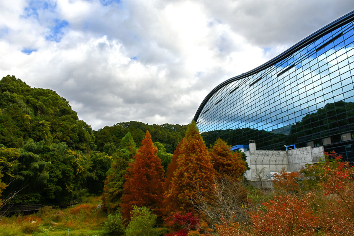 The striking, undulating outline of Kyushu National Museum is one of its main attractions.