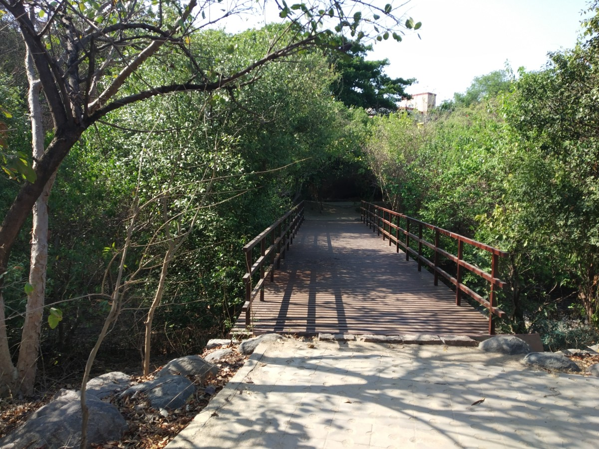 The bridge over the backwater canal inside the Adyar estuary