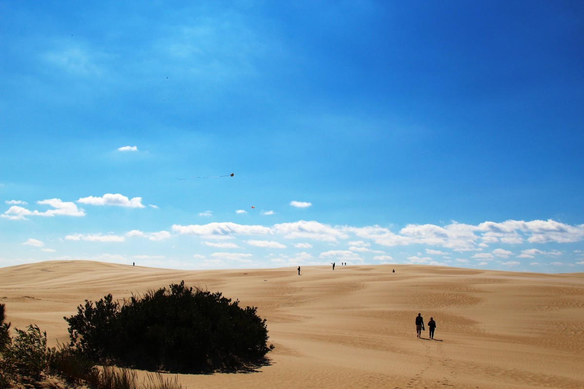 Jockey's Ridge State Park on the Outer Banks of North Carolina