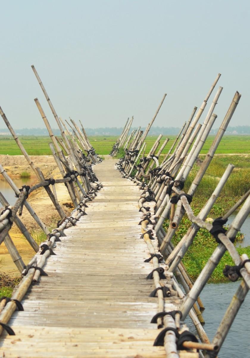 A bridge too far? (c) A. Harrison