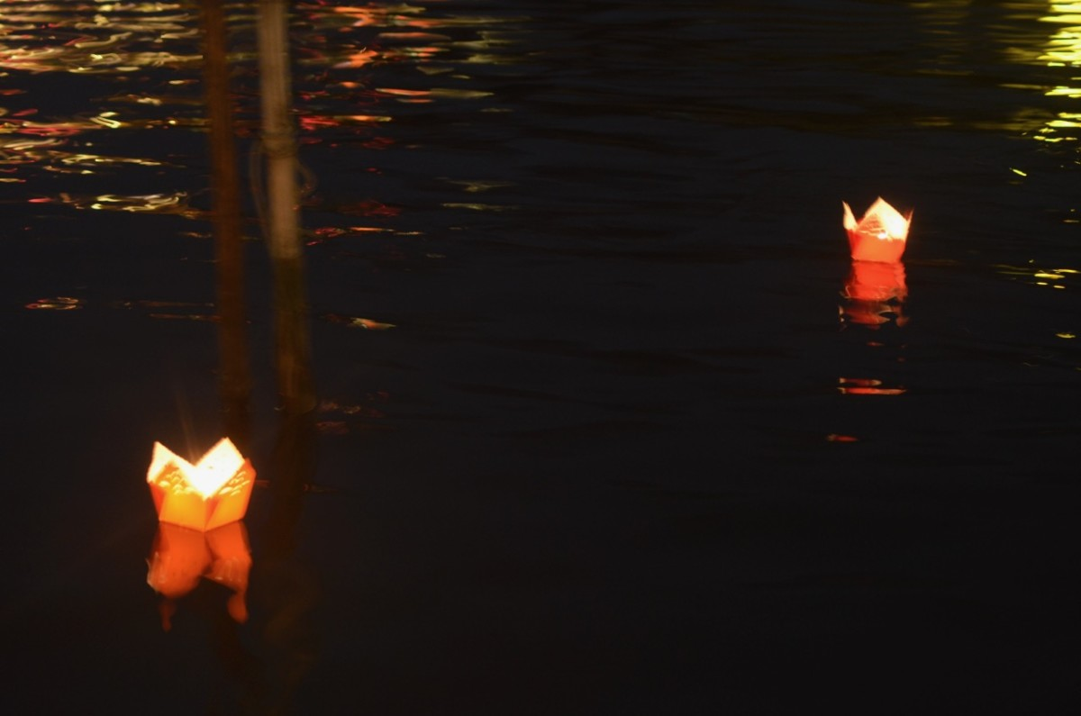 Floating lanterns (c) A. Harrison