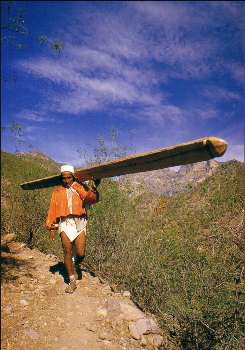 Walking or running is often the Tarahumara Indians' preferred form of transportation in their rugged homeland.