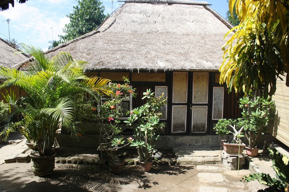 The guesthouse we stayed at had these types of huts.