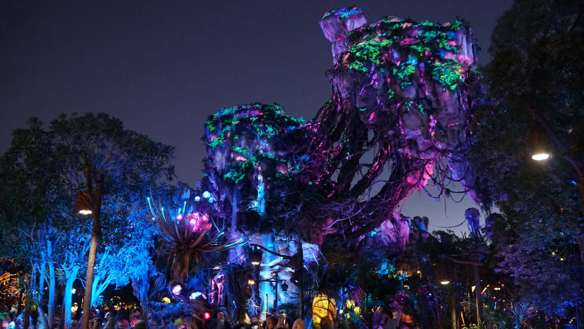 The nighttime bioluminescence of Pandora - The World of Avatar takes you to another world.