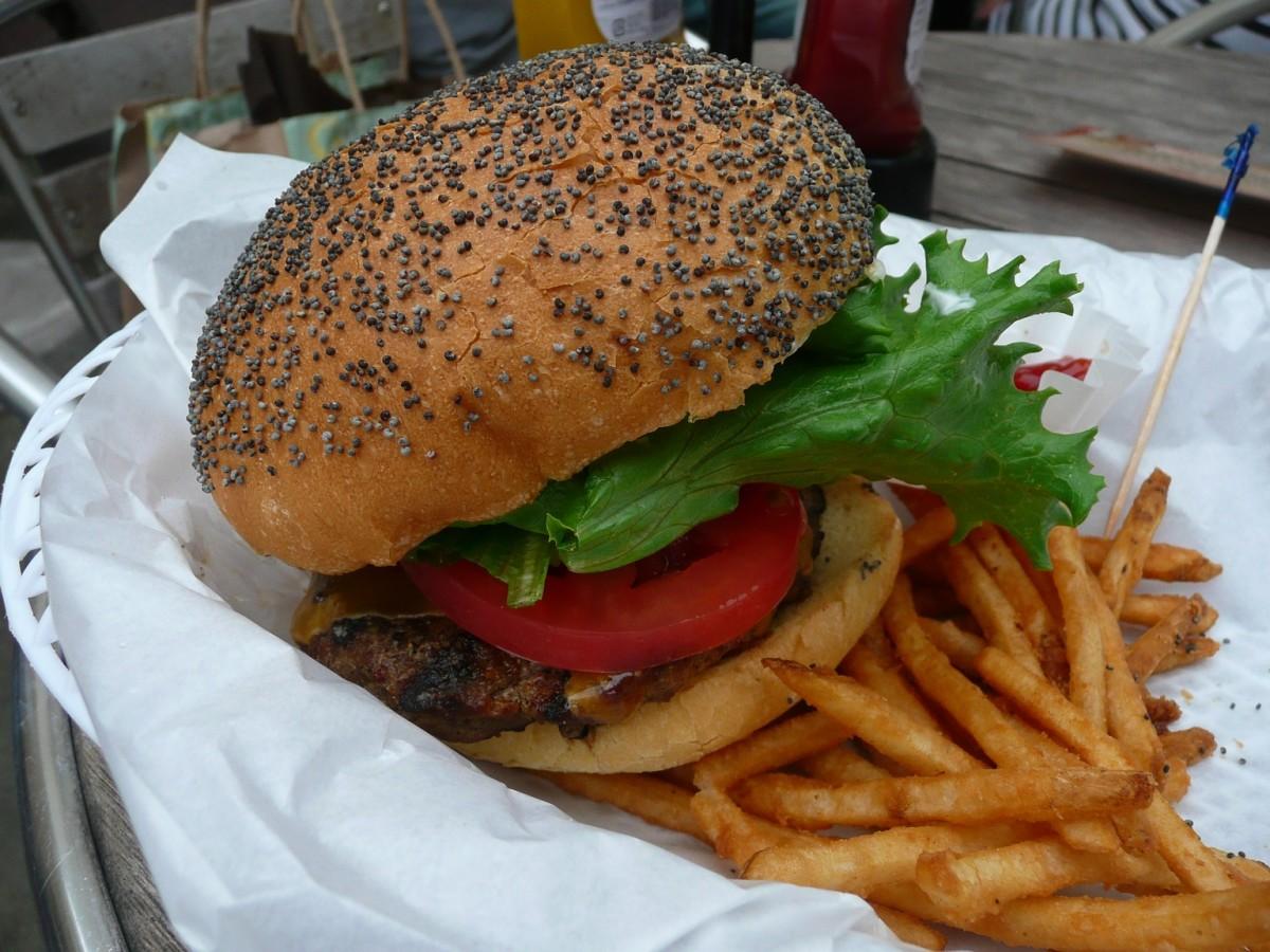 Cheeseburger from Kua Aina