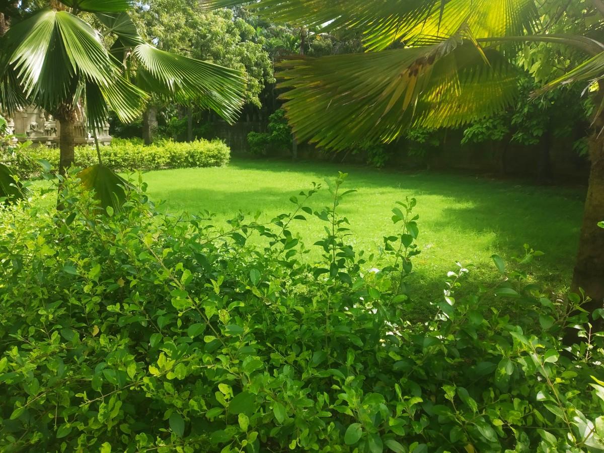 Admire Nature at VGP Universal Kingdom