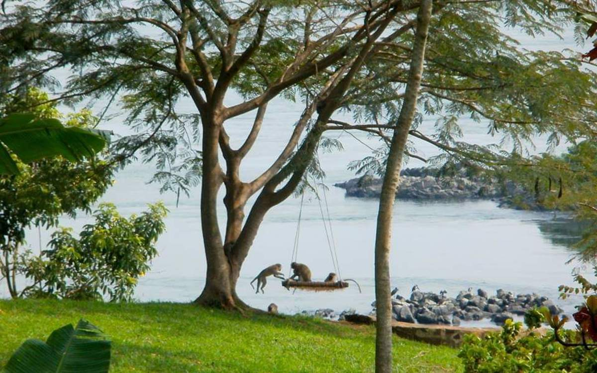 Breath taking views of lake Victoria