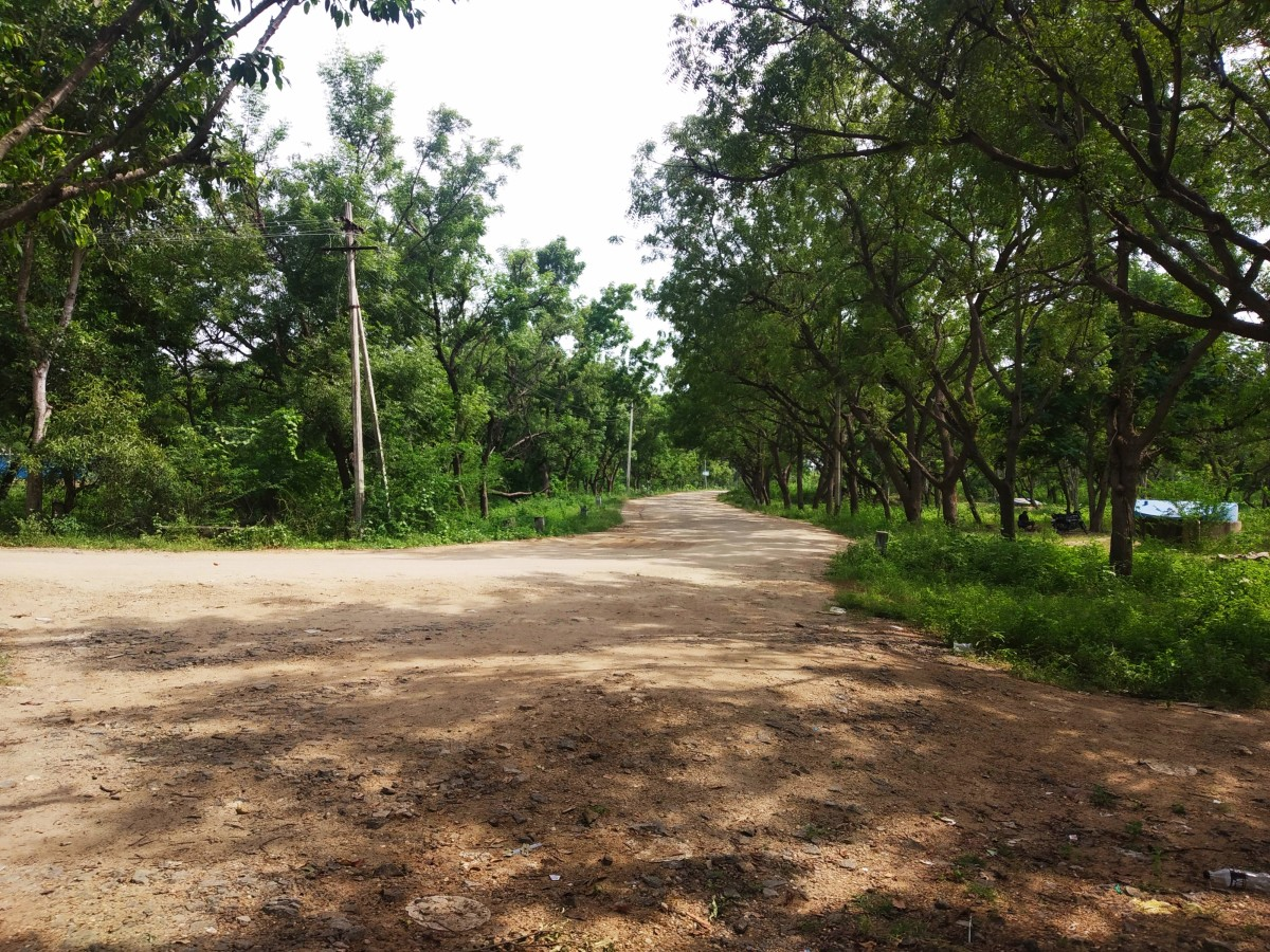 Nature Walk, Irukkankudi