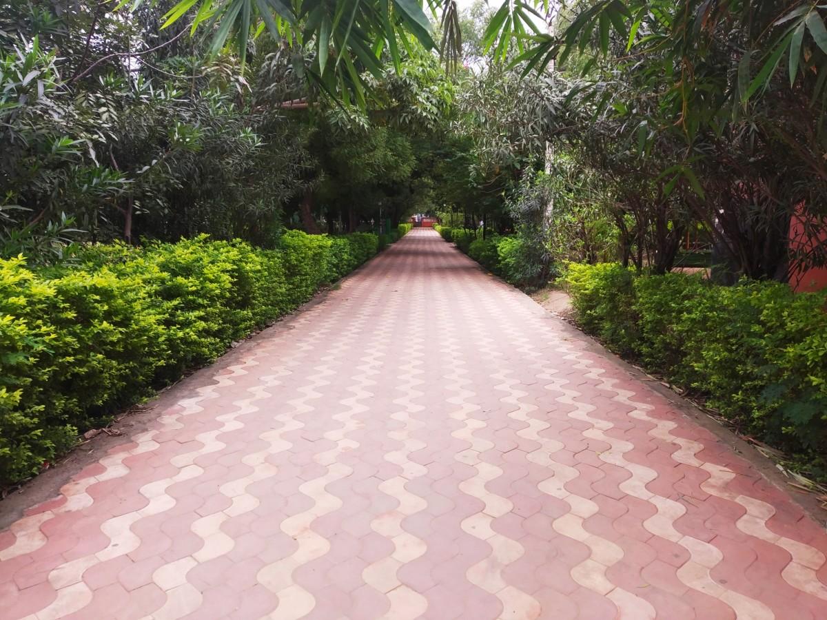 Ramadoss Memorial Park